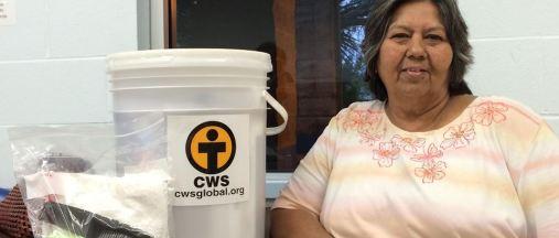 CWS buckets b Capture